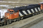 CN 5528
